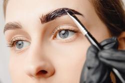 Master brush dye henna eyebrows woman in beauty salon. Correction of brow hair.