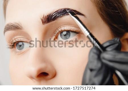 Master brush dye henna eyebrows woman in beauty salon. Correction of brow hair. ストックフォト ©