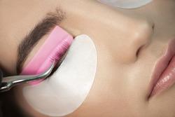 Master glues eyelashes to pink lash roller. Close-up of beauty model's face during lash lift laminating botox procedure. Eyelash Care Treatment: lifting and curling, lash lamination and extension.