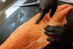 Master shusi with black hygienic gloves cleaning and preparing a huge fresh salmon. Removing the bones with tweezers.Food and kitchen concept