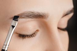Master tinting of eyebrow hair women, brow correction.
