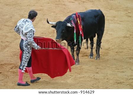 Matador and bull in bullfight. Seville, Spain. Focus on the bull.