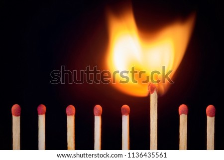 match at the moment of ignition. concept of leadership, originality, vibrant life, self-development, purposefulness #1136435561