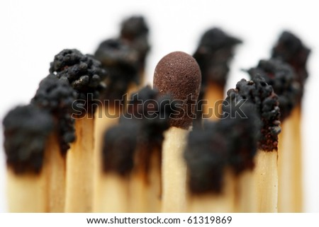 Match sticks - stock photo