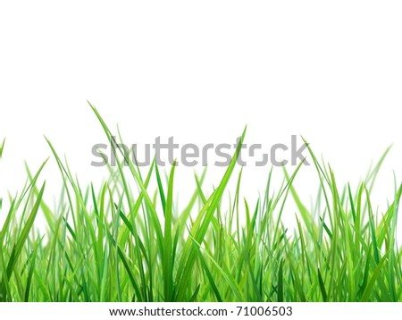 Material of grass