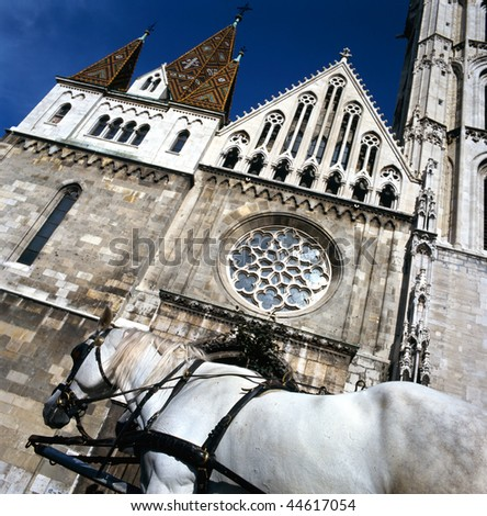 Matthias church in Budapest, at foreground white horse.This photo shows also the ornate tiled roof of this church