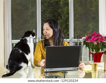 Mature Asian woman looking into family cat face while working at home with notebook computer on glass table with large windows in background