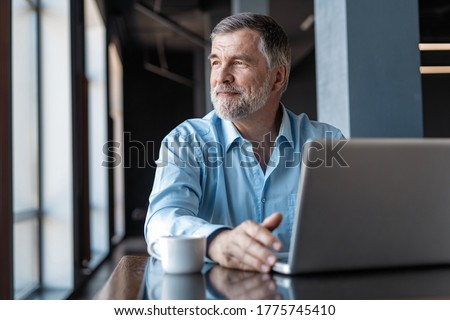 Mature businessman working on laptop. Handsome mature business leader sitting in a modern office