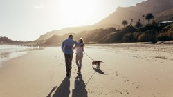 Mature couple strolling along the beach with their dog. Rear view shot of loving mature couple on the beach with dog.