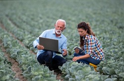 Mature farmer and young woman with laptop squatting in vegetable garden and checking quality