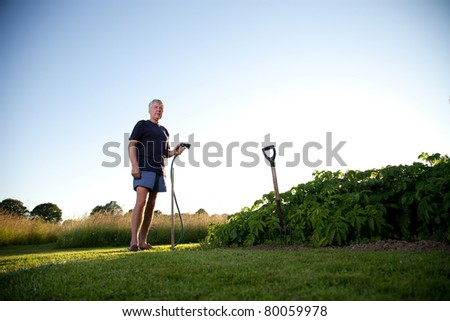 Mature man irrigating vegetables.