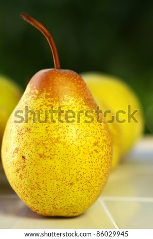 Mature rocha pear.