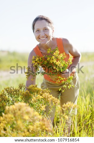 Mature woman gathers herbs at wild meadow
