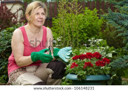 Mature woman look after her garden, holds shears in one hand and is about to cut a flower