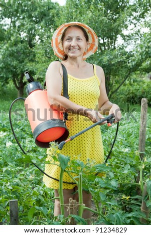 Mature woman spraying tomato plant in field