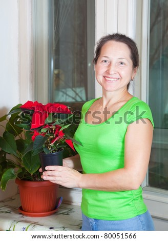 Mature woman with Poinsettia flowers in flowering pot  at her home