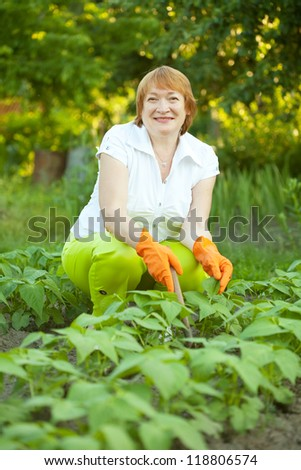 Mature woman working in field of beans
