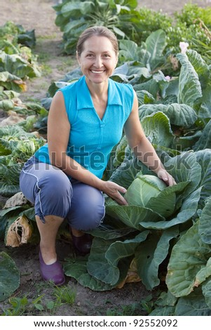 Mature woman working  in plant of cabbage