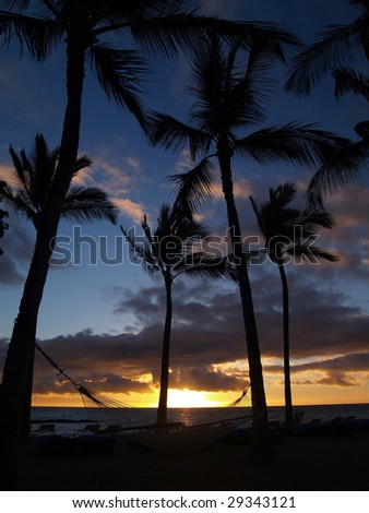Mauna Lani Sunset and hammock - stock photo