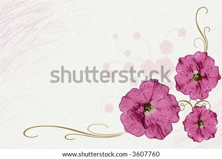 Mauve flowers with gold stems against a white and mauve background. - stock photo