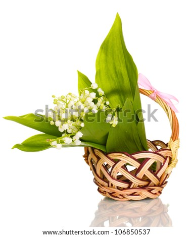 May-lilies in basket isolated on white
