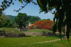 Maya temple ruin park with palace and observation tower behind leaves, Palanque, Chiapas, Mexico