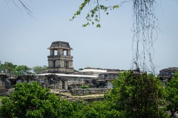 Maya temple ruins with palace and observation tower surrounded by hanging ivy, Palanque, Chiapas, Mexico