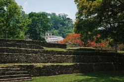 Maya temple ruins with palace and observation tower surrounded by tropical trees, Palanque, Chiapas, Mexico