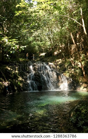 Mayflower Waterfall into a pool in Mayflower Bocawina National Park, Belize. Sun shines through the jungle canopy into the clear, blue water.