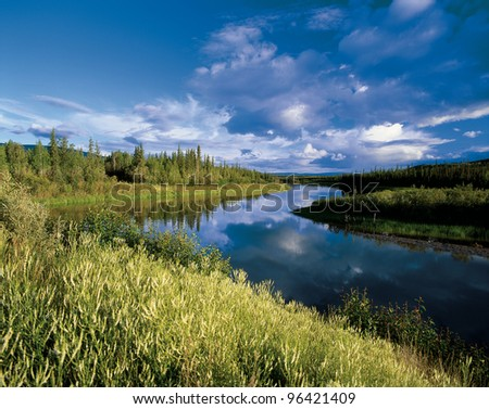Mayo River in the forest in Yukon scenery