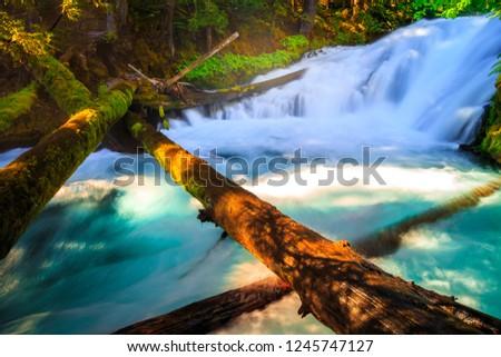 McKenzie River Cascades, Oregon #1245747127