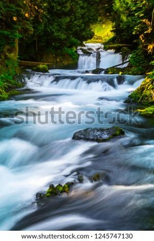 McKenzie River Cascades, Oregon #1245747130