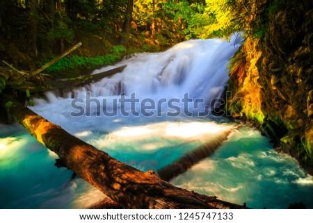 McKenzie River Cascades, Oregon #1245747133