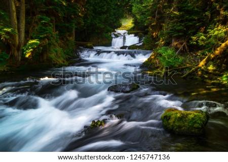 McKenzie River Cascades, Oregon #1245747136
