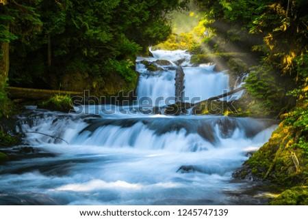 McKenzie River Cascades, Oregon #1245747139