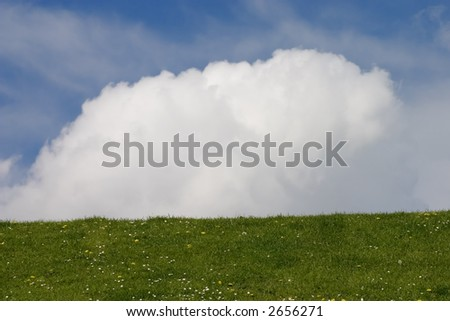 Meadow and large cloud