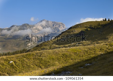 Meadow and trees -  Brenta in the background - Trentino
