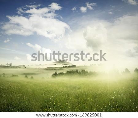Meadow In Landscape, New Zealand