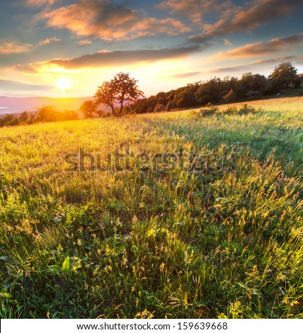 meadow in mountains #159639668