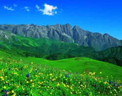 meadow in spring,view at JiuDing Mount in SiChuan China