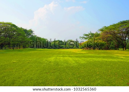 Meadow scenery landscape with blue sky concept. - Shutterstock ID 1032565360