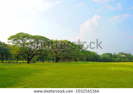 Meadow scenery landscape with blue sky concept. #1032565366