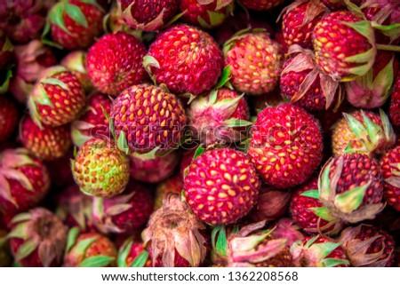 Meadow strawberries, wild berries, wild strawberries #1362208568