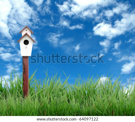 meadow with bird house and blue sky