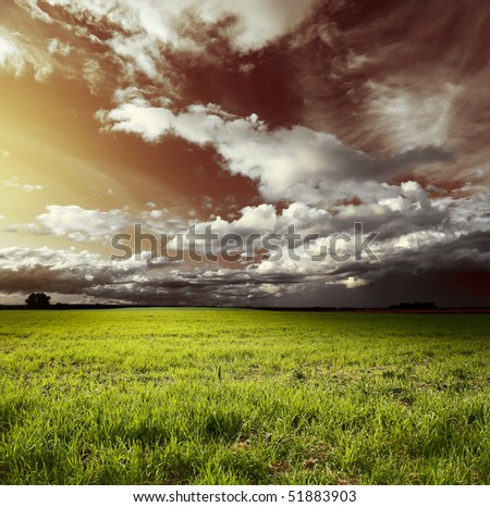 Meadow with green grass and red sky with fluffy clouds
