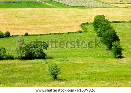 Meadows and grass at rural hill side