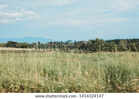 Meadows, forests and mountains during the daytime, blurred foreground #1454324147