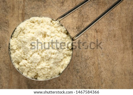 measuring metal scoop of whey protein powder against textured bark paper, top view