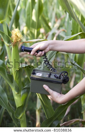 Measuring radiation levels of corn