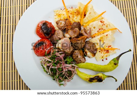 Meat cuisine - kebab served in plate - stock photo